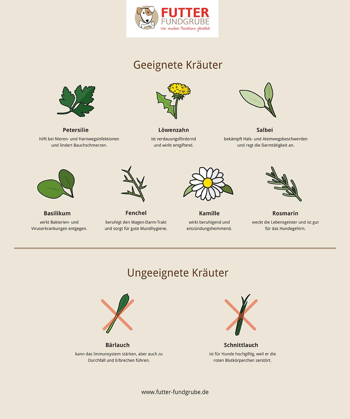 Kraeuter-fuer-Hunde-Grafik