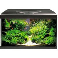 Amtra System 80 LED Aquarium schwarz