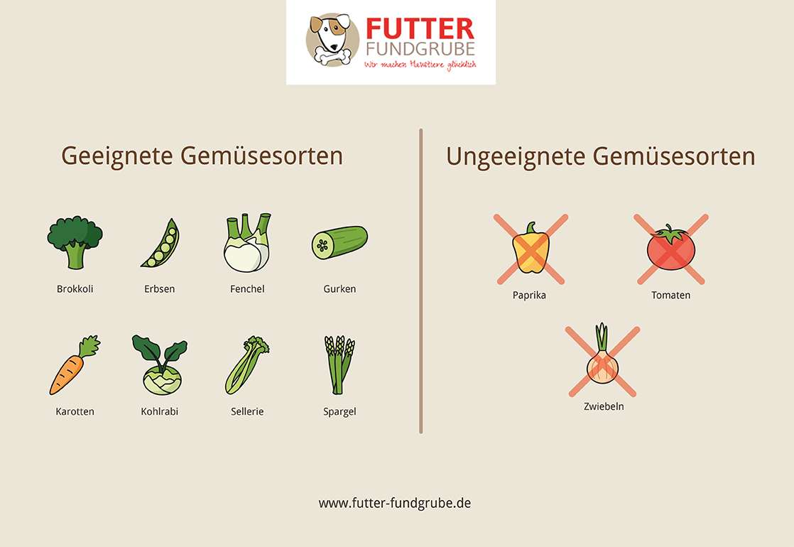 Infografik-Gemuese-Hunde-geignet-ungeignet