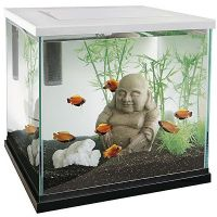 Superfish Zen 30 Aquarium weiß