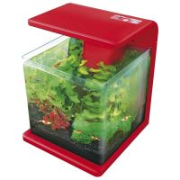 Superfish Wave 15 Nano Aquarium rot